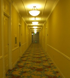 I like exploring hotels . . . especially the long empty hallways, late at night. I keep expecting to see ghosts or encounter out of work gods or have strange adventures. None of these things ever happen, unfortunately.