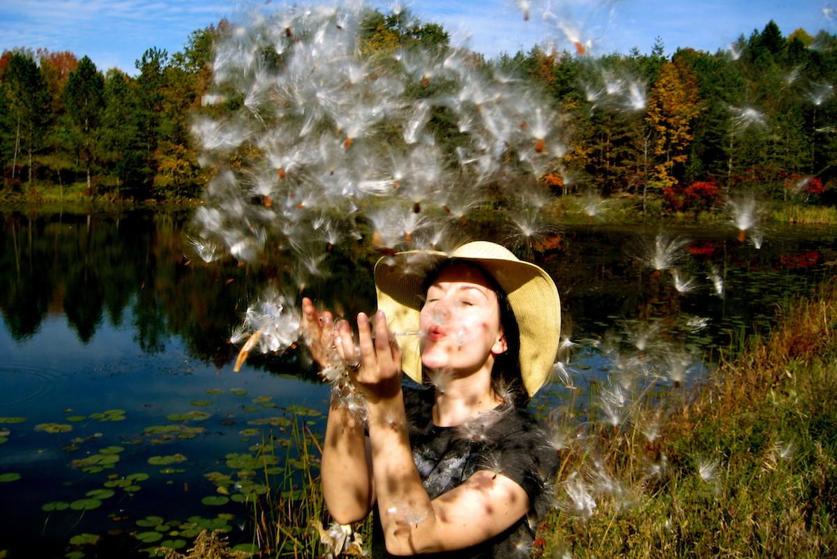 Aurohn Lake - Milkweed